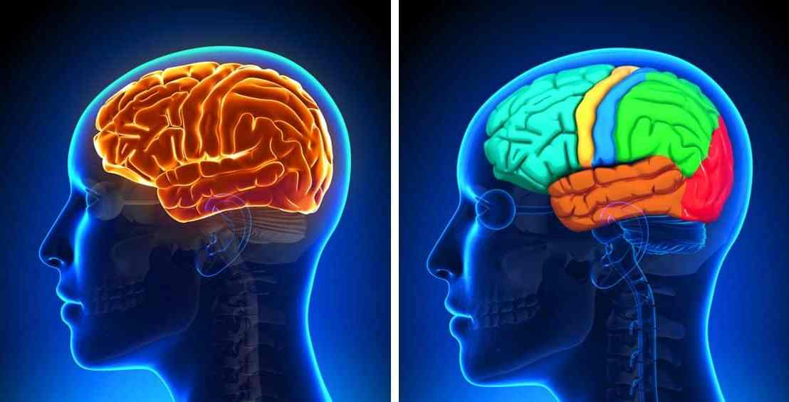 Des neuroscientifiques disent qu'écouter de la musique pourrait diminuer l'anxiété de65%